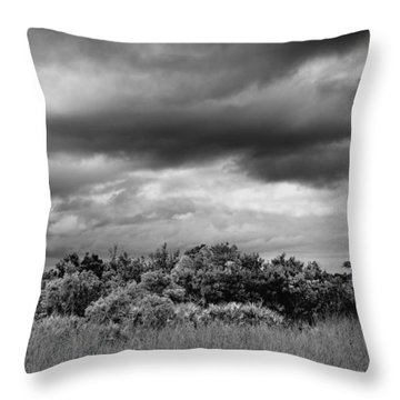 Everglades Storm Bw Throw Pillow