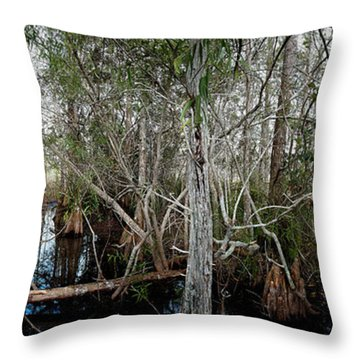 Everglades Swamp-1 Throw Pillow
