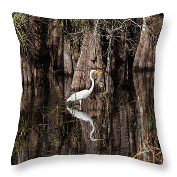Everglades0419 Throw Pillow