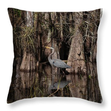 Everglades04414 Throw Pillow
