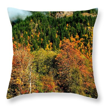 Evergreen Color Throw Pillow by Benjamin Yeager