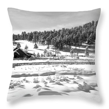 Evergreen Lake House In Winter Throw Pillow