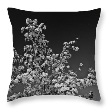 Evergreen Pear Bw Throw Pillow