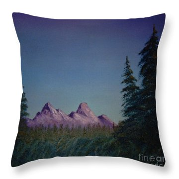 Evergreen Throw Pillow by Stuart Engel