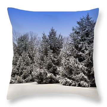 Evergreen Trees In Winter Throw Pillow