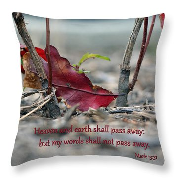 Throw Pillow featuring the photograph Everlasting Words by Larry Bishop