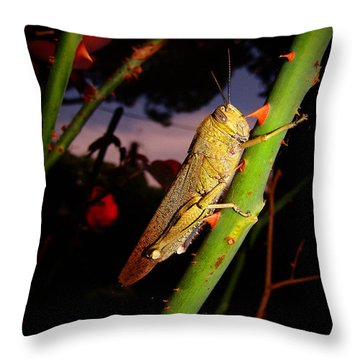 Every Rose Has Its Thorns Throw Pillow