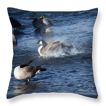 Everyone Duck Throw Pillow