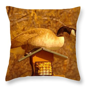 Everything Was Fine At The Bird Cafe Til Gordon The Goose Made A Pig Out Of Himself Throw Pillow by Jeff Swan