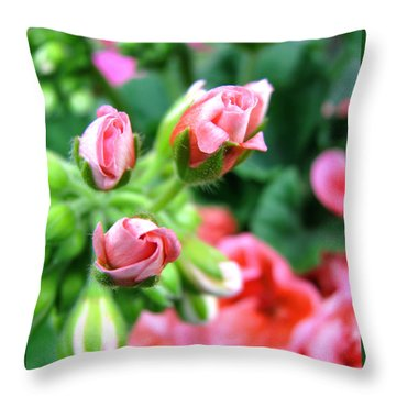 Throw Pillow featuring the photograph Everything's Coming Up Geraniums by Brooks Garten Hauschild