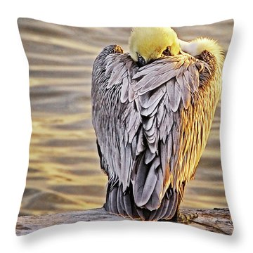 Evil Eye Pelican Throw Pillow