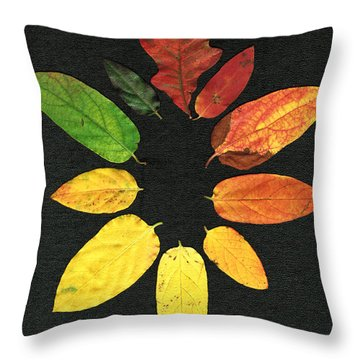 Throw Pillow featuring the digital art Evolution Of Autumn Bk by Pete Trenholm