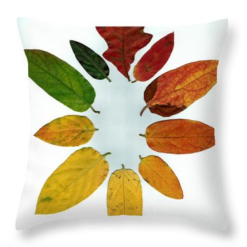Throw Pillow featuring the digital art Evolution Of Autumn Wh by Pete Trenholm