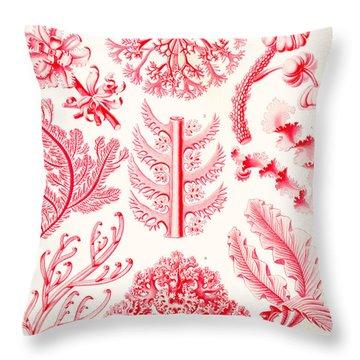 Examples Of Florideae From Kunstformen Der Natur Throw Pillow