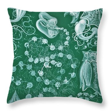 Examples Of Siphonophorae Throw Pillow by Ernst Haeckel