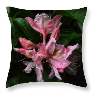 Exbury Azalea Throw Pillow by Louise Kumpf