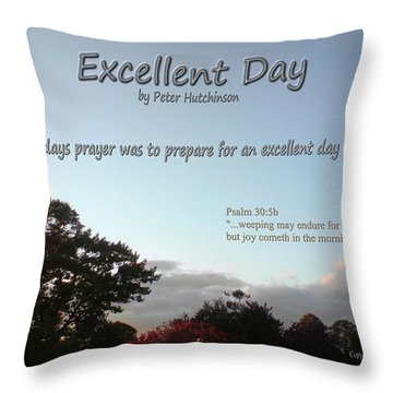 Excellent Day Throw Pillow