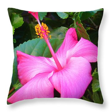 Exotic And Beautiful Flower In My Back Yard. Throw Pillow