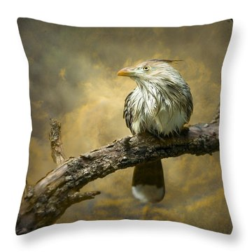 Exotic Bird - Guira Cuckoo Bird Throw Pillow by Gary Heller