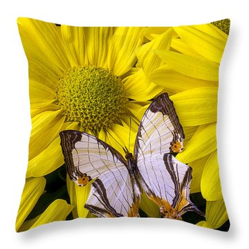 Exotic Butterfly Throw Pillow by Garry Gay