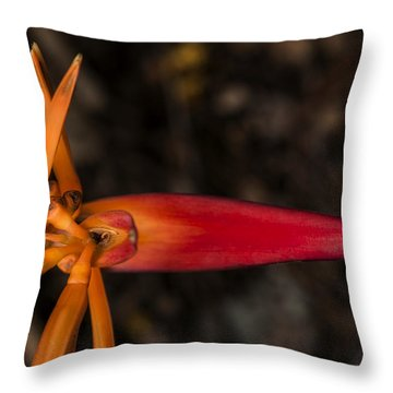 Exotic Heliconia Throw Pillow by Steven Sparks