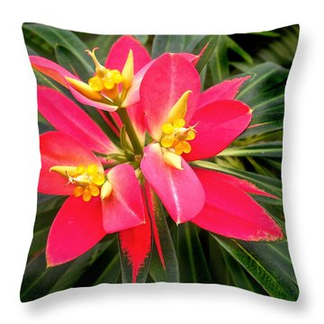 Exotic Red Flower Throw Pillow