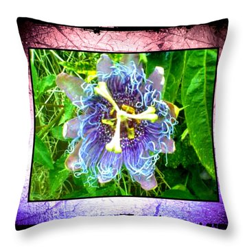 Throw Pillow featuring the photograph Exotic Strange Flower by Absinthe Art By Michelle LeAnn Scott