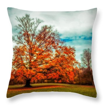 Expecting The Winter Throw Pillow by Hannes Cmarits