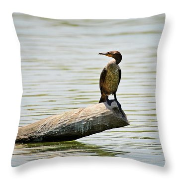 Throw Pillow featuring the photograph Experience Nature In Estero San Jose by Christine Till
