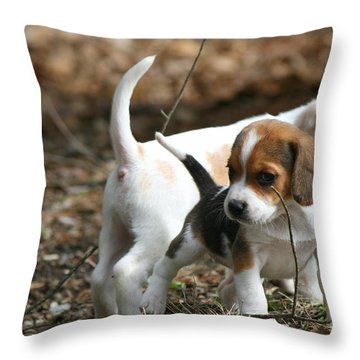 Exploring Beagle Pups Throw Pillow by Neal Eslinger