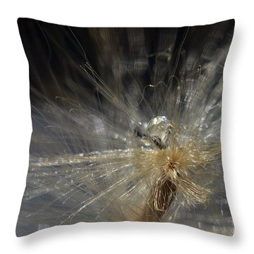 Explosion Throw Pillow by Michelle Meenawong
