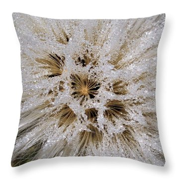 Explosion Of Jewels Throw Pillow