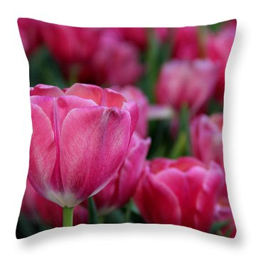 Throw Pillow featuring the photograph Explosion Of Pink by Tammy Espino