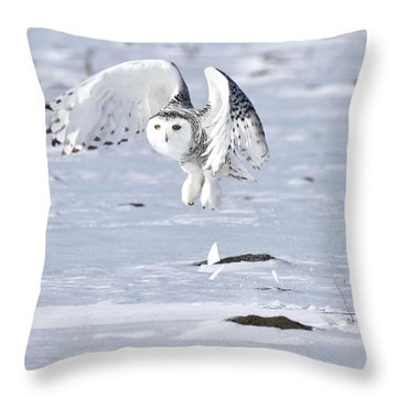 Throw Pillow featuring the photograph Explosive Take Off by Heather King