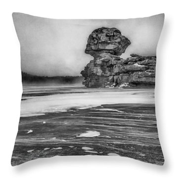 Exposed To Wind And Weather Throw Pillow