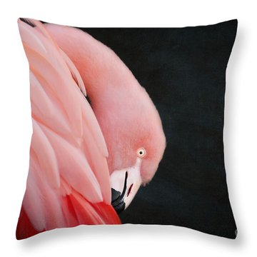Exquisite Pink Flamingo #5 Throw Pillow