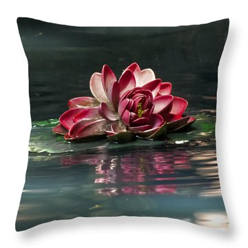 Throw Pillow featuring the photograph Exquisite Water Flower  by Lucinda Walter
