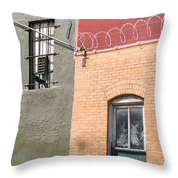 Exterior Throw Pillow