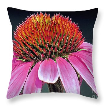 Extreme Closeup Throw Pillow by Janice Drew