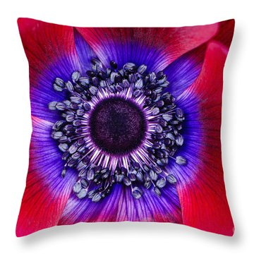 Extreme Macro Of A Red Anemone Poppy Throw Pillow by Oscar Gutierrez