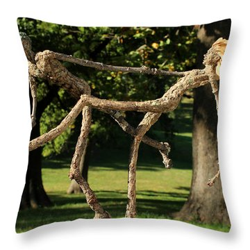 Exuberance Photographed Outside Throw Pillow by Adam Long