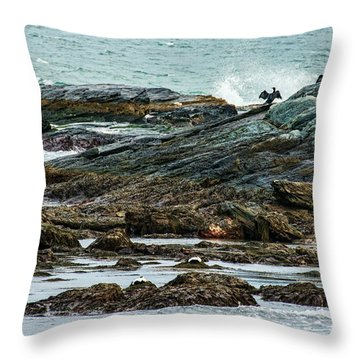 Throw Pillow featuring the photograph Exultant Cormorant by Nancy De Flon