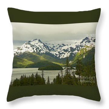 Throw Pillow featuring the photograph Eyak Lake Landscape by Nick  Boren