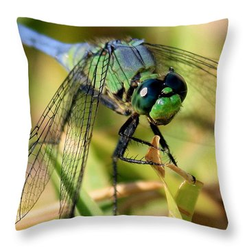 Eye Level Throw Pillow by Carol Groenen