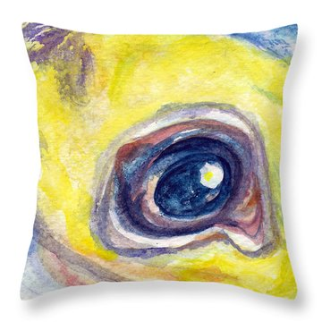 Eye Of Pelican Throw Pillow by Ashley Kujan