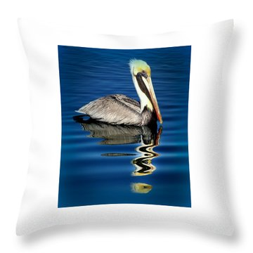 Eye Of Reflection Throw Pillow