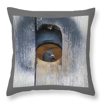 Throw Pillow featuring the photograph Eye Of The Eye by Debby Pueschel