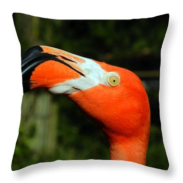 Throw Pillow featuring the photograph Eye Of The Flamingo by Bill Swartwout