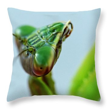 Eye Of The Mantis Throw Pillow