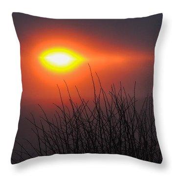 Eye Of Winter Throw Pillow